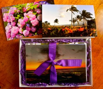 Aloha Living Series